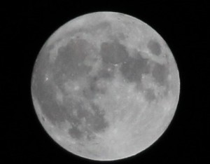 A Hallow Moon